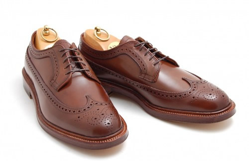 Alden Ravello Longwing Blucher